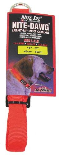 LED Nylon Night Safety Dog Collar by Nite Ize – Orange – Large, My Pet Supplies