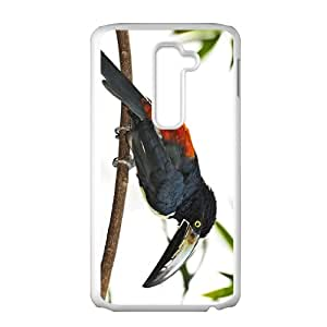 Toucan Parrot Hight Quality Plastic Case for LG G2