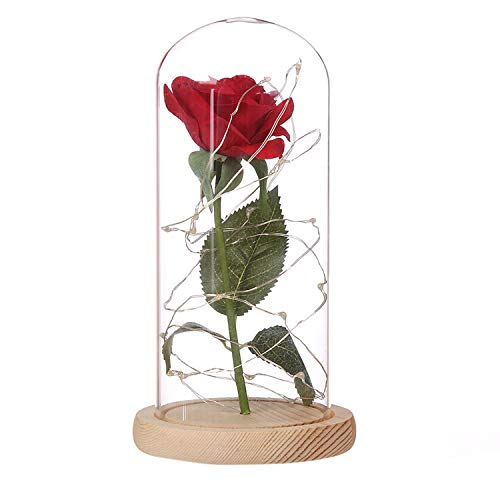 Adoeve Pink Rose Enchanted Red Silk Rose and LED Light in Glass Dome on a Wooden Base Artificial Flowers ()