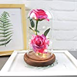 Micro Landscape, Putars Immortal Flower Ball Shape Clear Transparent Glass Vase Romantic Rose Simulation Glass Shade Container Wedding Home Decoration (Hot Pink)