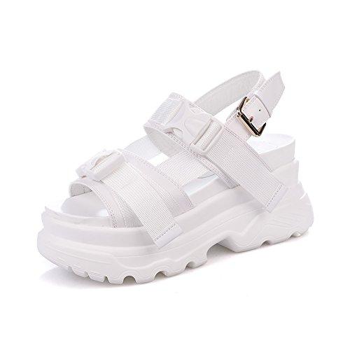 QQWWEERRTT Sandalias de Moda Femenina de Verano Suela Gruesa Estudiante Nueva Plataforma Zapatos Universal Roman Sports Sandalias de Época blanco