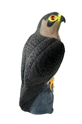 Bird-X Falcon Predator Decoy Bird Scare