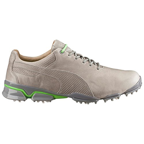 PUMA Golf Men's Titantour Ignite Premium Drizzle/Green Gecko