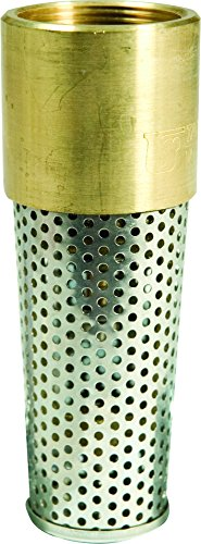 ECO-FLO Products EFFV125 1-1/4'' Brass Foot Valve by ECO-FLO Products