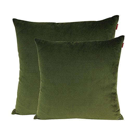 Shinnwa Velvet Super Soft Decorative Throw Pillow Case Solid