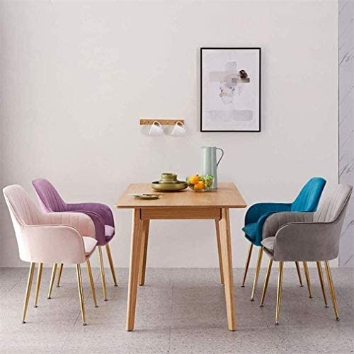 Chaise Accueil délicat Chaise de maquillage confortable Chaise de salle à manger de velours chaise de siège