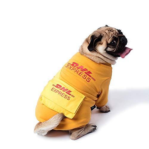 Fashion Designer Costumes For Halloween - WUFF Cotton Dog Sweater, Halloween Ups