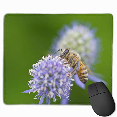 Mouse Pad Honeybee Purple Flower Rectangle Non-Slip 9.8in11.8 in Personalized Designs Gaming Rubber Mousepad Stitched Edges Mouse Mat