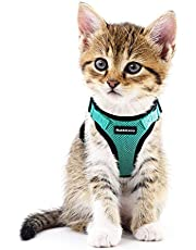 Rabbitgoo Cat Harness Escape Proof Small Dog Vest Harnesses, Adjustable Soft Mesh Kitty Harness for All Weather Walking, Padded Vest with Metal Leash Clip for Small Pets Puppies Kittens Rabbits, Green