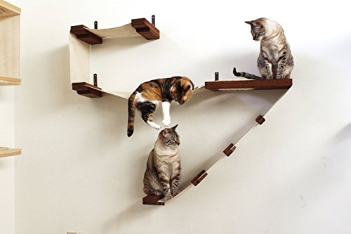 CatastrophiCreations Play – Cat Playplace Hammocks for Cats