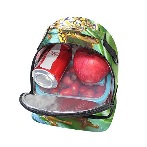 de para almuerzo picnic con para ajustable doble correa hombro el Bolso dxqwWPzgTd