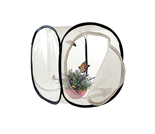 접을 수있는 곤충과 나비 케이지 곤충 & amp; /Collapsible Insect and Butterfly Cage Insect & Butterfly Habitat Terrarium Pop-up Butterfly Net (12x12x12 inches)