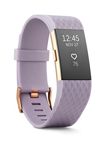 Fitbit Charge 2 Heart Rate Fitness Wristband Special Edition Lavender Rose Gold Small US Version