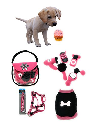 Welcome Home Puppy Gift Set for Small Dogs Featuring Dog Purse Toys Leash Harness Princess Tshirt Birthday Cupcake