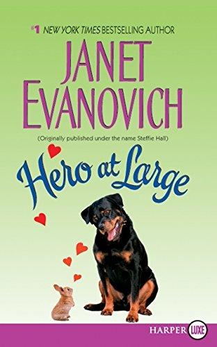 Hero at Large PDF