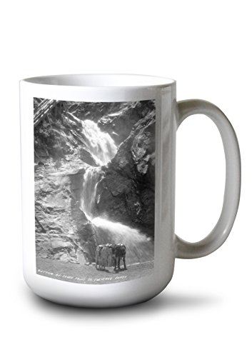 Lantern Press Colorado Springs, Colorado - South Cheyenne Canyon; Burro at Seven Falls Photograph (15oz White Ceramic Mug) ()