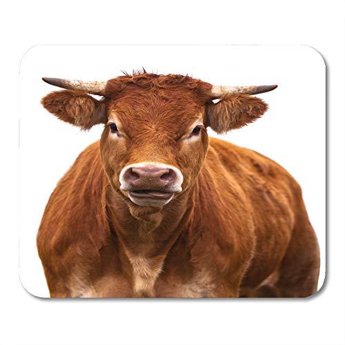 Semtomn Mouse Pad Adorable Cow Portrait on Farm Animal Grown for Organic Mousepad 9.8