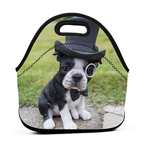 (LKJDAD Boston Terrier with Top Hat Sta Lunch Bag, Thick Insulated Lunchbox Bags,Tote Box with Zipper Closure for Kid Travel Picnic Office)