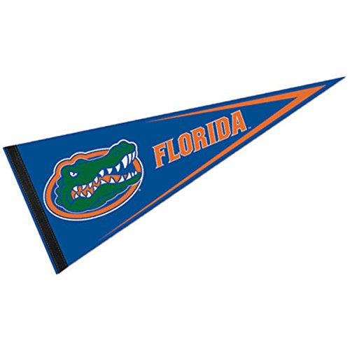 Pennant Gators Florida - Wincraft NCAA University of Florida WCR97152911 Carded Classic Pennant, 12