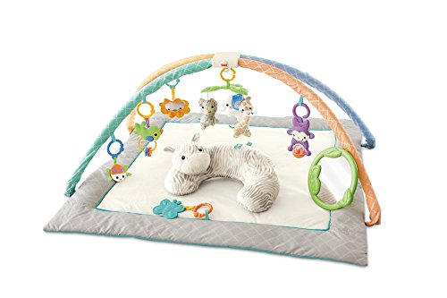 Fisher Price Safari Dreams Deluxe Comfort Gym by Fisher-Price