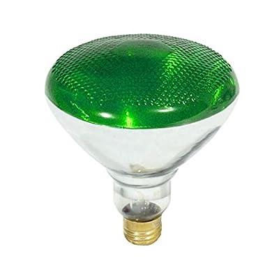 Incandescent Weatherproof 100 Watt Indoor/Outdoor Green Floodlight Bulb