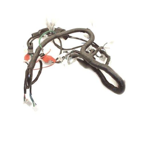 Wiring Loom for KS125-23 (WRLM013):
