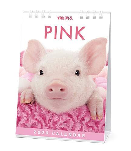 Guinea Pigs 2001 Calendar - The Pig Pink Desk Calendar 2020
