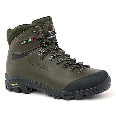 Zamberlan Men's 1007 VIOZ Hike GTX Hiking Boots: Shoes