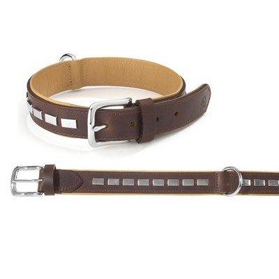Camon - Collar Texas con clavos 20 x 500 mm: Amazon.es: Productos ...