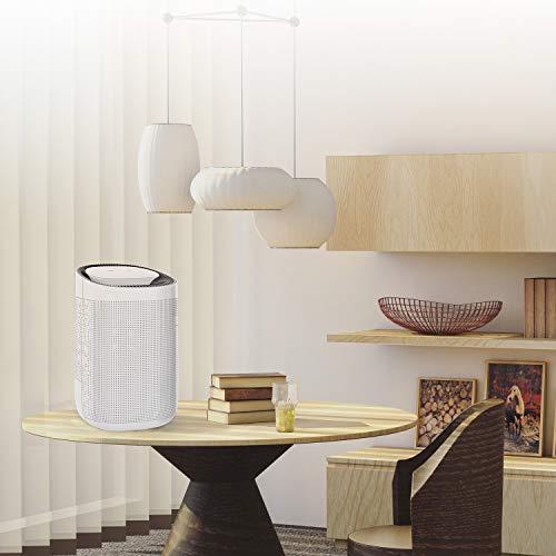 Honati Home Dehumidifier,Ultra-quiet Mini Portable Bedroom & Office Kitchen Basement Air Dehumidifier 1000ml