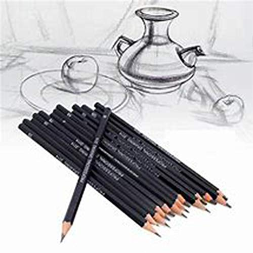 Sketching Pencil Set, 24 Pcs Graphite Drawing Pencil for Artists Adults Children Include 12B 10B 8B 7B 6B 5B 4B 3B 2B B HB 2H 4H 6HPencils, Charcoal Pencils, Canvas Pencil Bag and Accessories