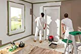 FROGTAPE 1358465 Multi-Surface Painter's Tape with