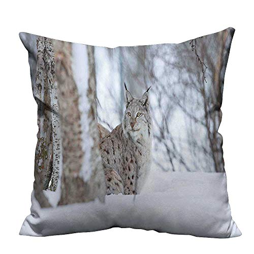YouXianHome Home Decor Pillowcase Lynx Snowy Cold Forest Norway Nordic Country Wildlife Apex Predator Light Brown White Durable Polyester Fabric(Double-Sided Printing) 20x20 inch
