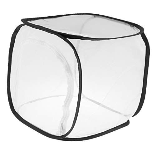 [해외]B Baosity 접이식 곤충 나비 서식 지 넷 テラリウム 사육 케이지-# 1 / B Baosity Collapsible Insect Butterfly Habitat Net Terrarium Breeding Cage - #1