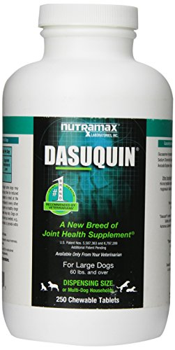 Nutramax Dasuquin Count Tablets Large