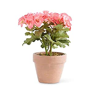 "Afloral Pink Silk Begonia Flower Arrangement in Clay Pot - 11"" Tall 43"
