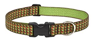 LupinePet 1-Inch Copper Canyon 12-20-Inch Adjustable Dog Collar for Medium and Large Dogs