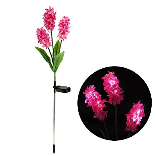 Samgo Outdoor Waterproof Solar Flower Battery Light Hyacinth for Garden, Balcony, Lawn Illumination (Pink)