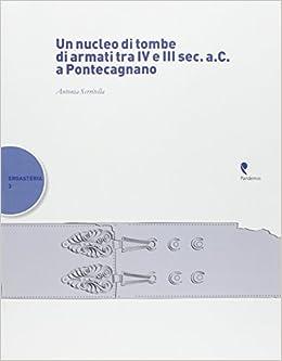 Book Un nucleo di tombe di armati tra IV e III sec. a. C. a Pontecagnano