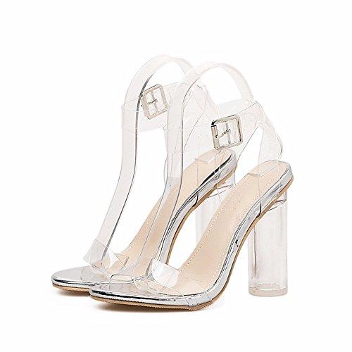 ZHZNVX Zapatos de mujer PU Primavera Verano bomba básica Comfort sandalias Chunky Talón de Oro Plata Casual Silver