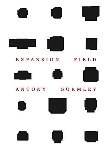 Antony Gormley: Expansion Field pdf epub