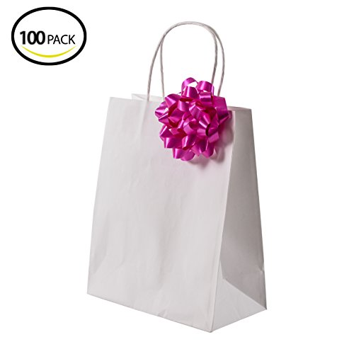 Premium White Kraft Paper Bag Set By Oasis Creations - 8