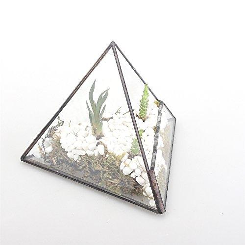 4.7' Height Pyramid Clear Glass Miniature Geometric Terrarium Indoor Tabletop Planter for Small Succulent Air Plants Moss Fern Desk Box Garden Diy Display Flower Pot Black