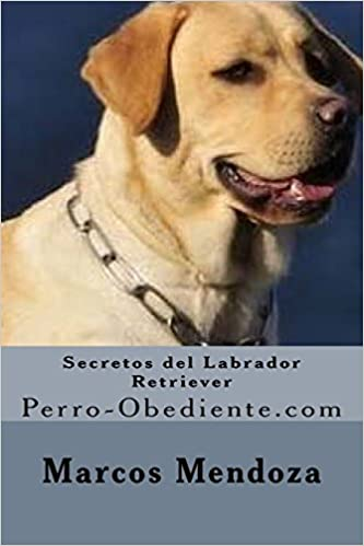 Secretos del Labrador Retriever: Perro-Obediente.com (Spanish Edition): Marcos Mendoza: 9781530683420: Amazon.com: Books