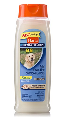 Hartz UltraGuard Rid Flea & Tick Oatmeal Dog Shampoo (The Best Flea Shampoo For Dogs)