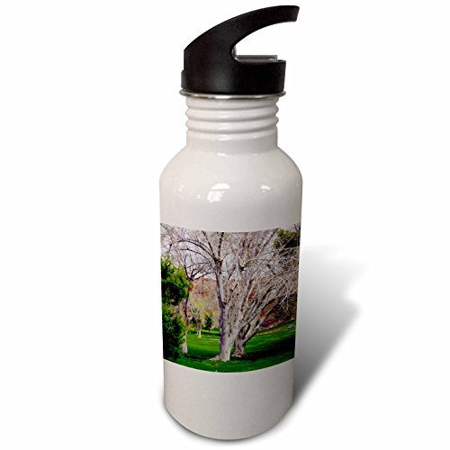3dRose Jos Fauxtographee- Summer Tree - A green park photo on a golf course in St. George UT - Flip Straw 21oz Water Bottle (wb_284157_2) by 3dRose