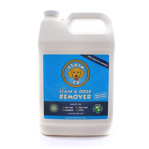 Pro Strength Carpet Odor & Stain Remover Works Like Magic in a Bottle on Tough Urine Feces Vomit and Even red Wine Too! (1 Gallon)