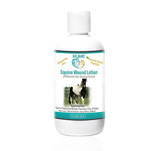Big Mare Equine Wound Lotion : Antibacterial/Antifungal. Clinically Proven Effective for Open Sores, Stitches, Scratches Dry Skin, Sunburn, Insect Bites & More. Veterinary Approved & Recommended.