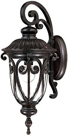 Acclaim 2112MM Naples Collection 1-Light Wall Mount Outdoor Light Fixture, Marbleized Mahogany