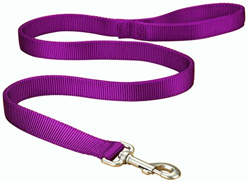 Hamilton Double Thick Nylon Dog Walking Lead, 1-Inch by 4-Feet, ()